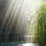 Музыка дождя для релаксации