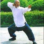 Тайзци стиля Чэнь