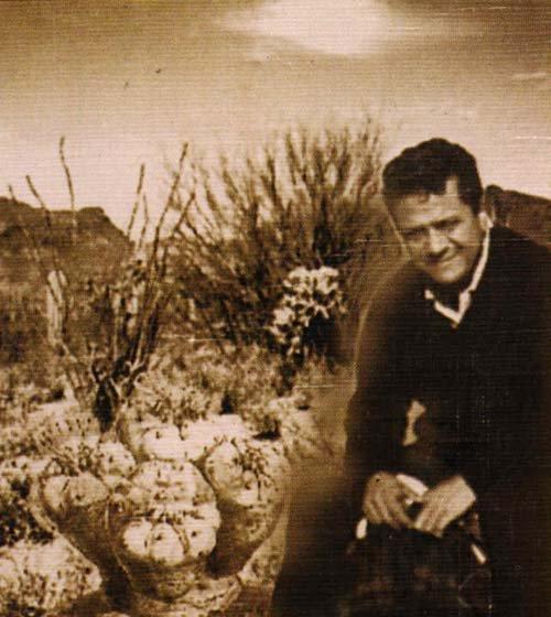 Кастанеда и кактусы