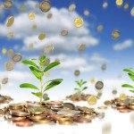 Как привлечь деньги в бизнес: способы, ритуалы, обряды