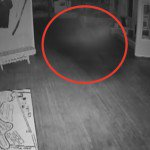 В Омском музее поселилось привидение