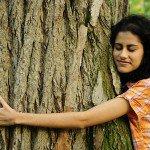 Энергетические свойства деревьев