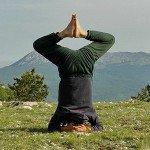 Семь ступеней Йоги в целостной практике.