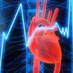 Как при помощи знания тела избежать различных болезней