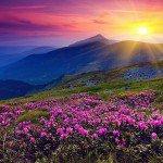 Цвет в сновидении и его значение