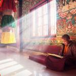 Тибетский монах предостерегает от 2026 года: что будет потом?