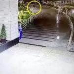 Пугающий призрак из больницы попал на фото