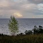 Воды озера Гопло выявили загадочную деревянную структуру из средневековья