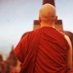 Буддийский монах предсказал коронавирус?